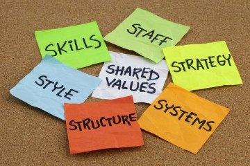 organizational culture, analysis and development concept